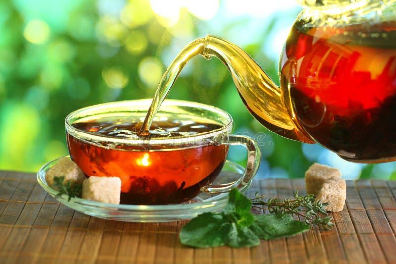 Taza de té y de tetera. foto de archivo