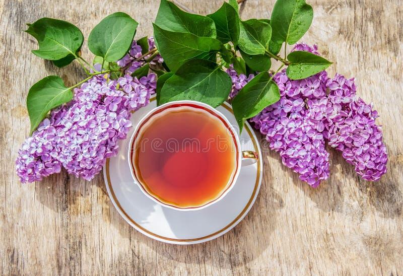 Taza de té y de flores fragantes de la lila Rama y té de la lila del verano en el jardín foto de archivo