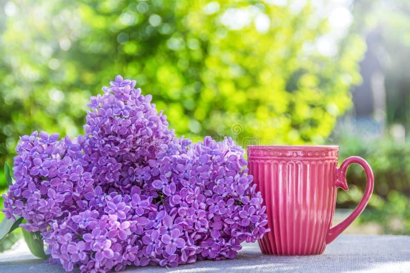 Taza de té y de lila fragante Taza rosada Taza de caf? en el jard?n foto de archivo libre de regalías