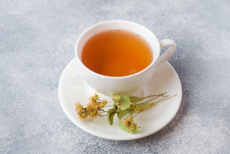 Taza de tilo del té verde y de las flores en fondo gris Copie el espacio fotografía de archivo libre de regalías