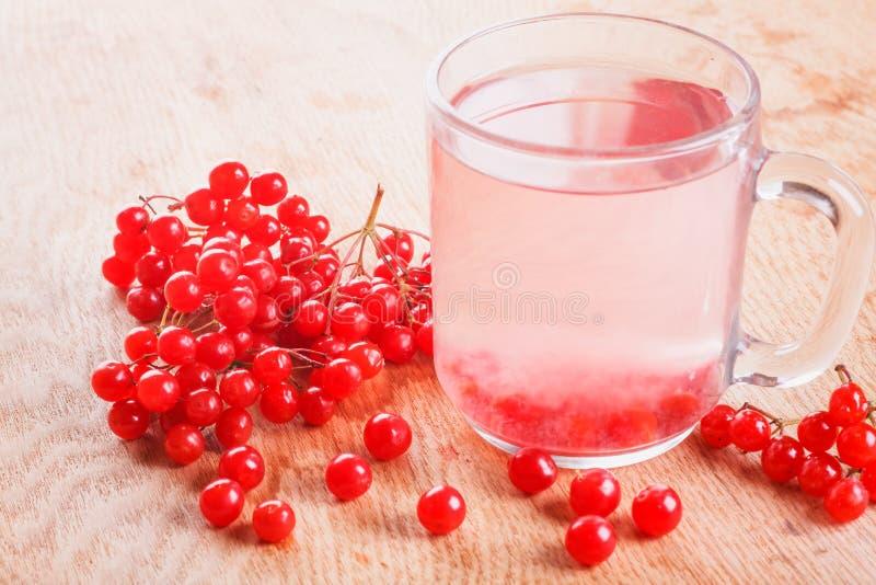 Taza de Viburnum maduro rojo de la bebida imagen de archivo