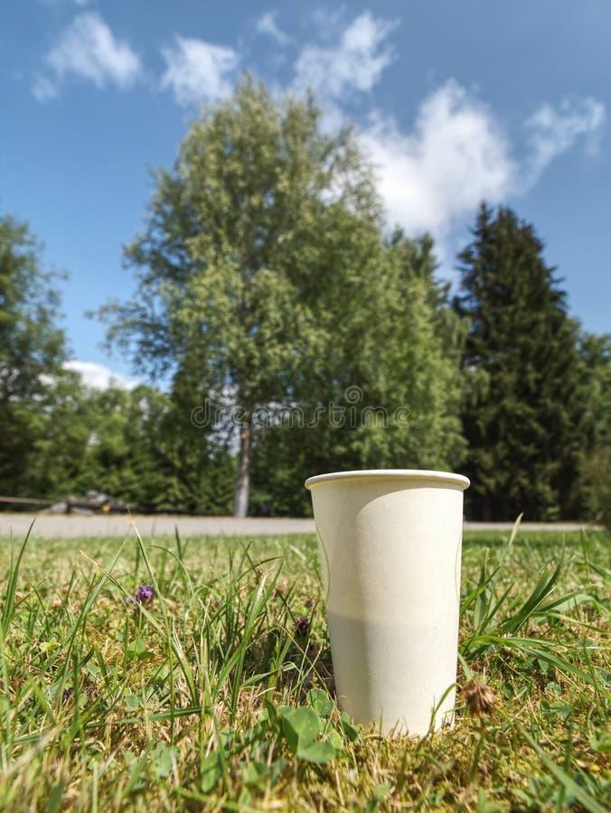 Taza del caf? con leche Café aromático en taza de papel para llevar en hierba foto de archivo libre de regalías