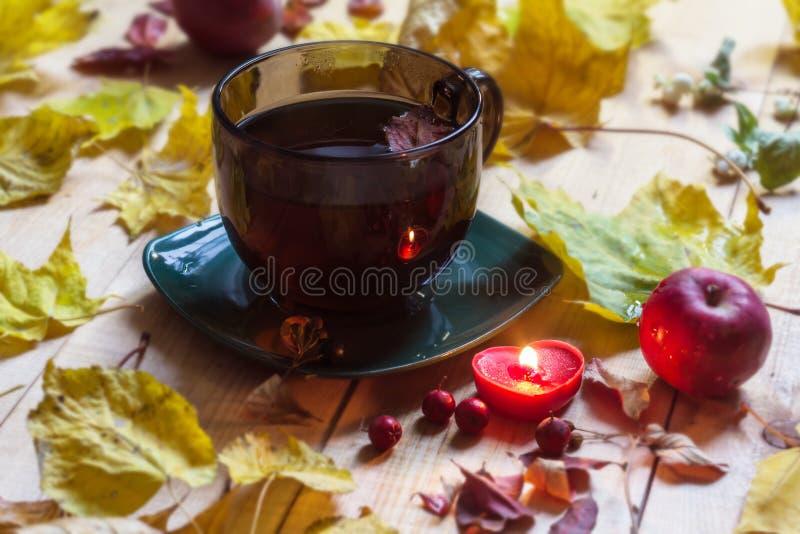 Taza del té de la tarde, humor del otoño, caída de la hoja del otoño foto de archivo