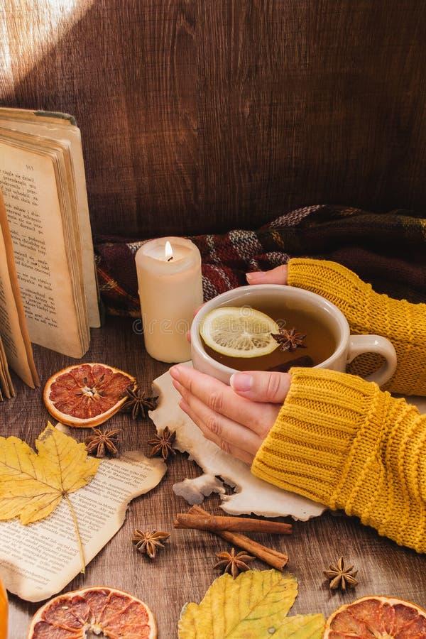 Taza del té del otoño en las manos fotografía de archivo libre de regalías
