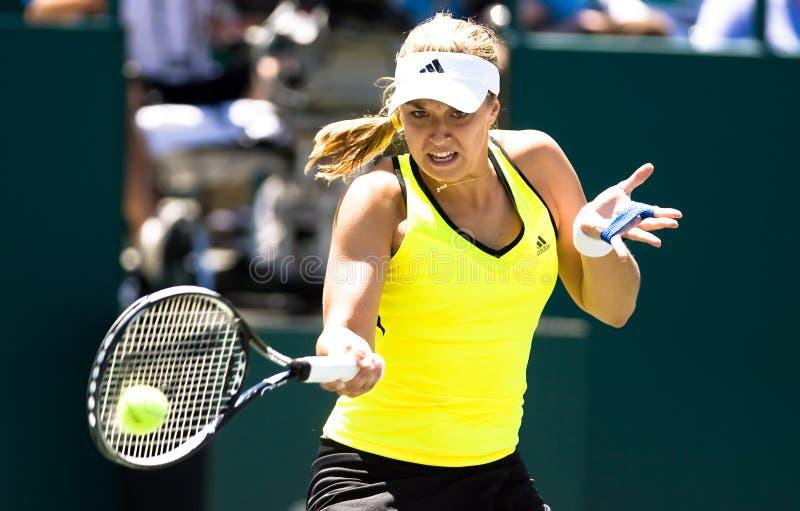Taza el 16 de abril de Cirlce de la familia del viaje de Sony Ericsson WTA fotos de archivo