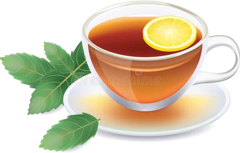 Taza transparente de té negro con el limón y la menta stock de ilustración