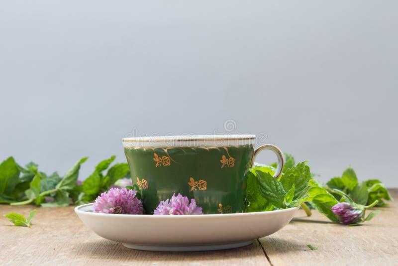 Taza verde con el platillo Hojas de menta fresca y flores del trébol para imagen de archivo libre de regalías