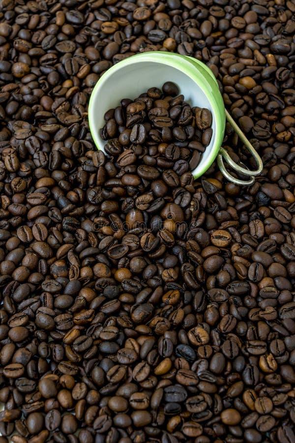 Taza verde entre muchos granos de café fotos de archivo