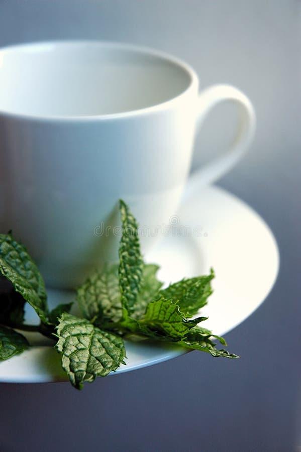 Download Taza y menta de té stock de ilustración. Ilustración de bebida - 1286905