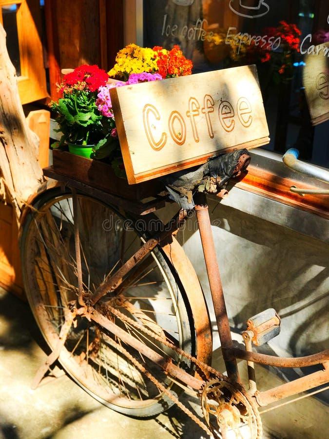 Tazas de café y granos de café frescos alrededor imagenes de archivo