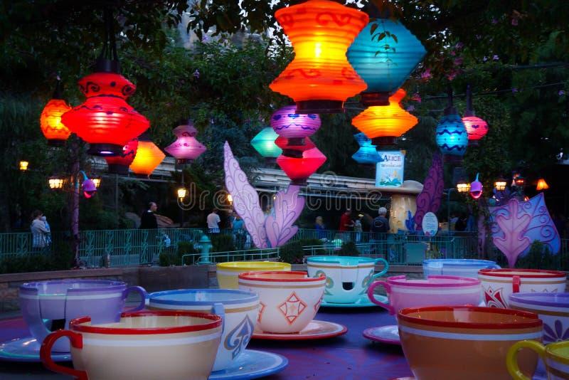 Tazas de té de giro Disney en la noche fotos de archivo libres de regalías