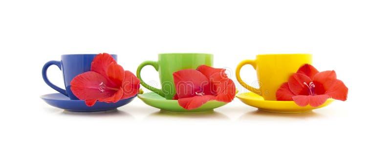 Tazas de té hermosas con las flores imagen de archivo