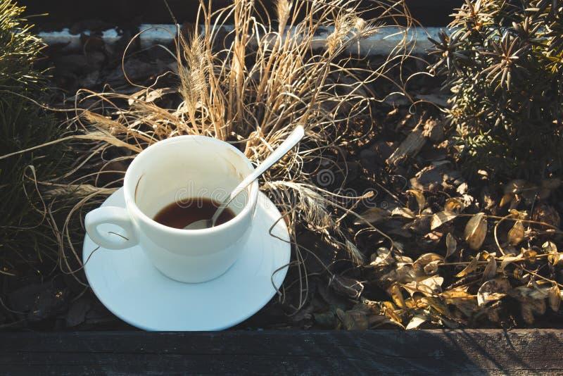 Tazza bianca con caffè che sta fra il giardino floreale e la pianta immagini stock libere da diritti