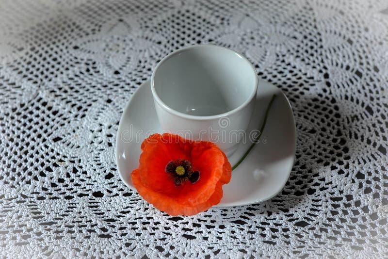 tazza bianca con i semi di papavero fotografia stock