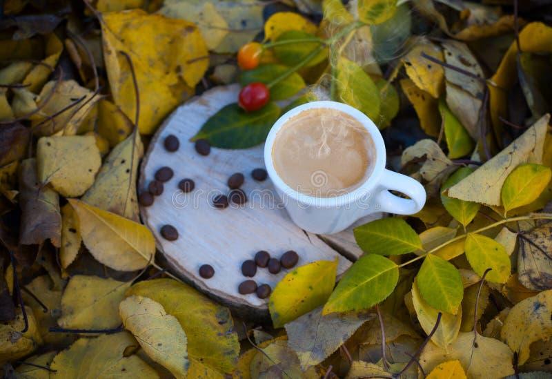 Tazza bianca con il caffè del caffè espresso su un ceppo di legno immagini stock libere da diritti