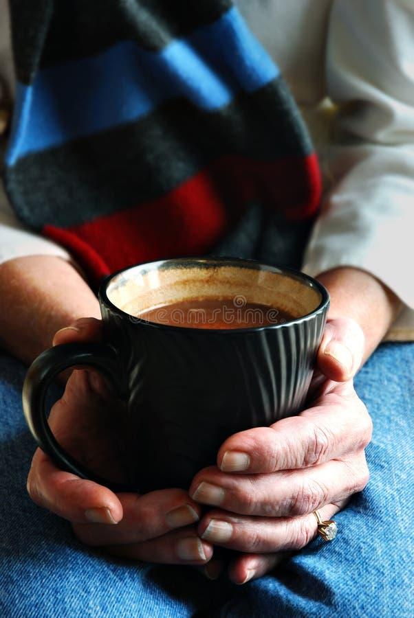 Tazza calda di cacao fotografia stock libera da diritti