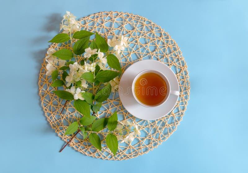 Tazza dei fiori del gelsomino e del tè verde su fondo blu immagini stock