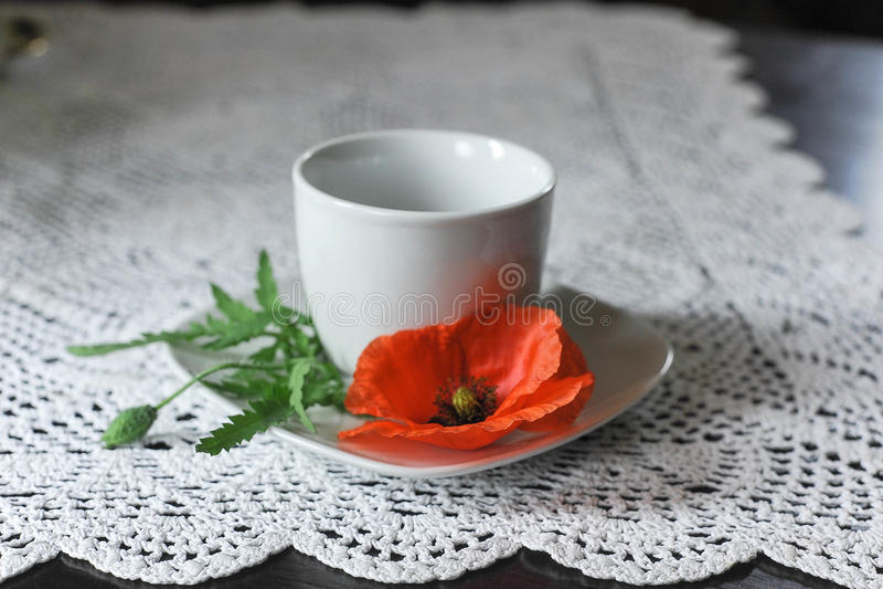 Tazza dei semi di papavero fotografia stock