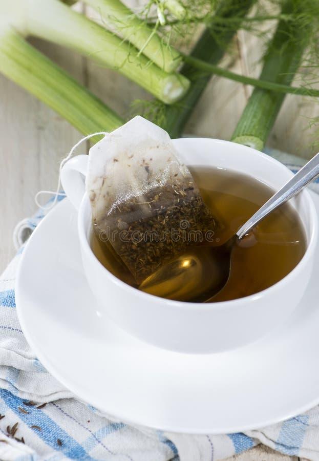 Tazza del tè del finocchio fotografia stock libera da diritti