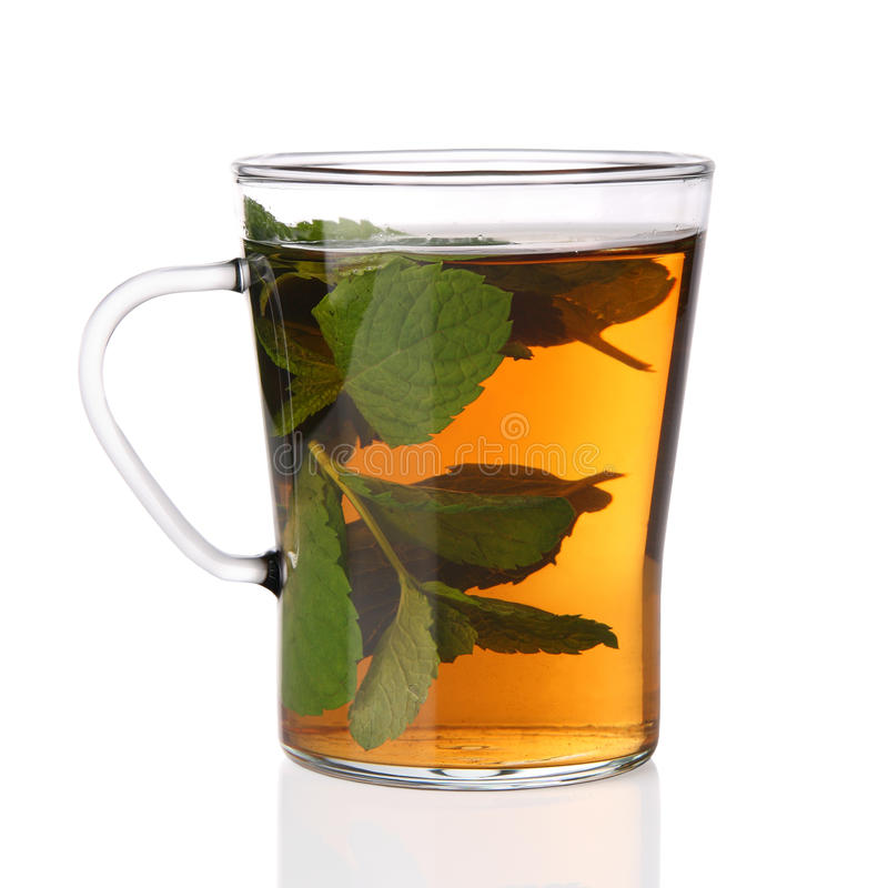 Tazza del tè della menta fresca fotografia stock
