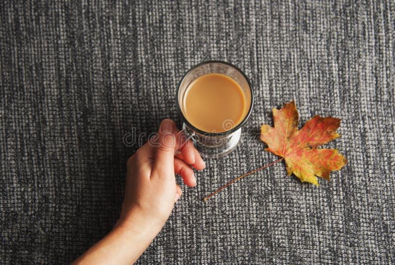 Tazza della bevanda del cioccolato o del cacao della tenuta della mano della donna sopra fondo grigio tricottato, fondo accoglien immagini stock