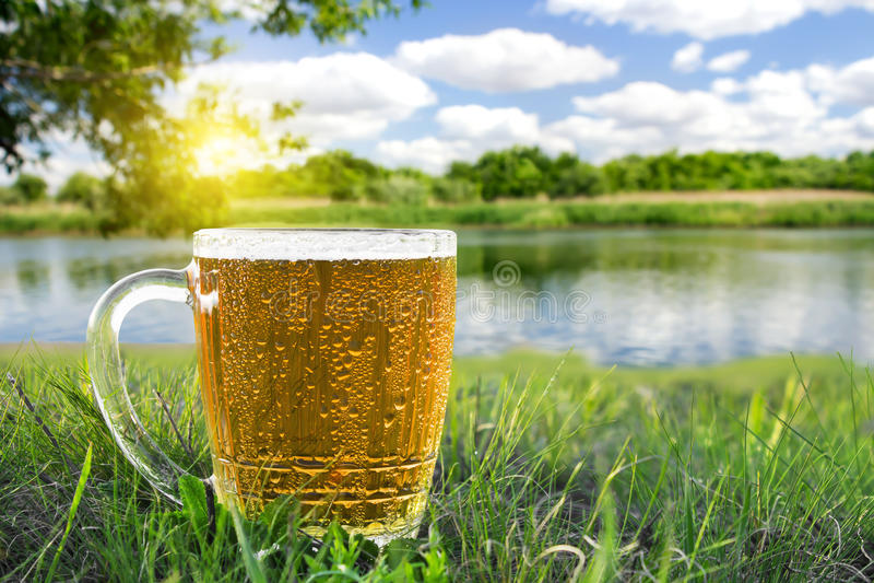Tazza di birra fredda immagine stock libera da diritti