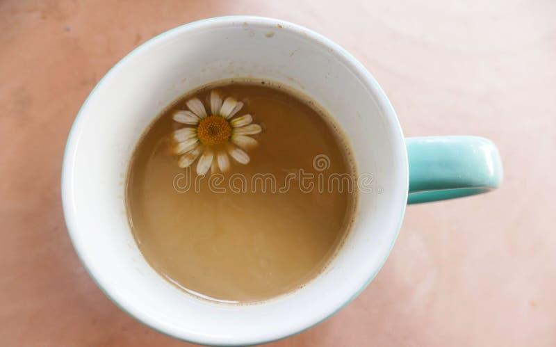 Tazza di caffè bianca con il fiore della margherita immagini stock libere da diritti