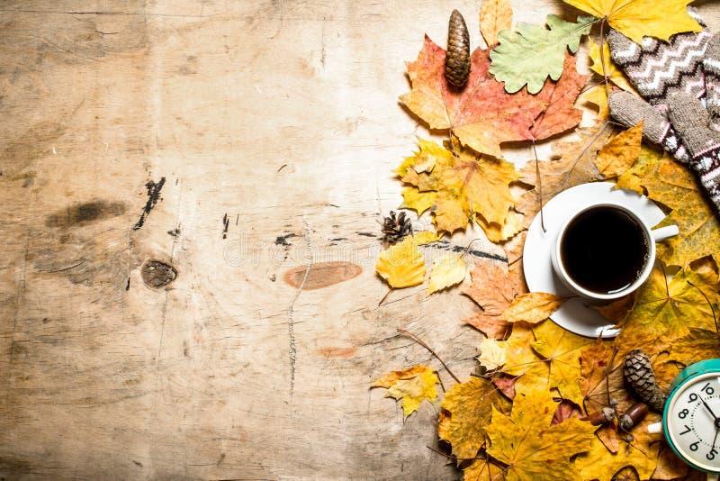 Tazza di caffè con la sveglia sulle foglie di autunno immagini stock