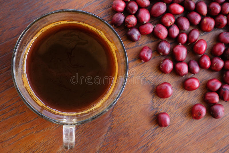 Tazza di caffè e fagioli freschi delle bacche fotografia stock libera da diritti