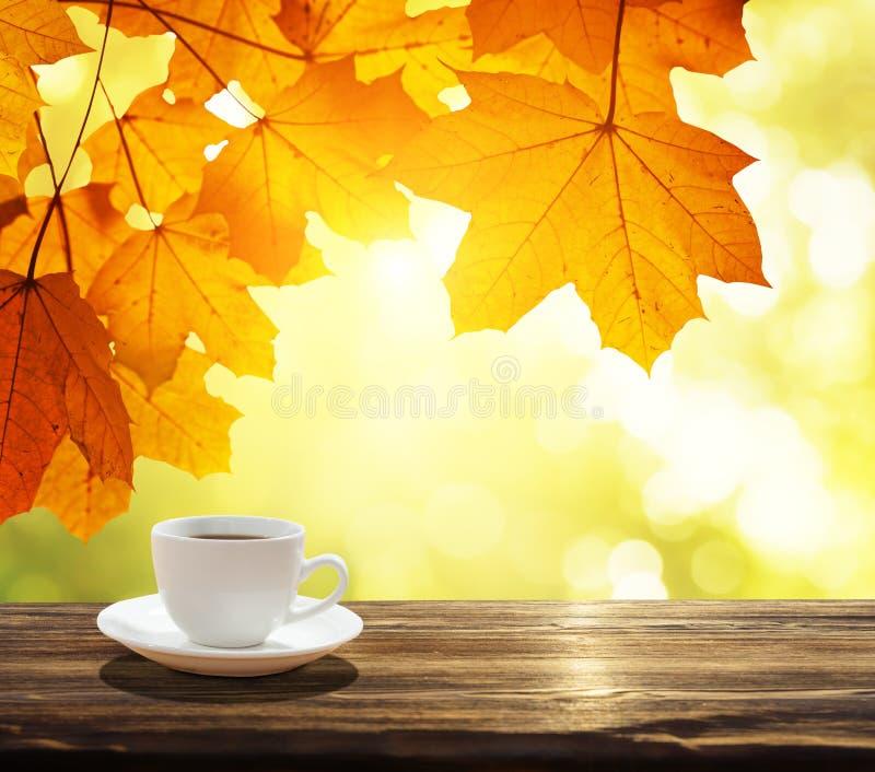 Tazza di caffè ed autunno fotografie stock