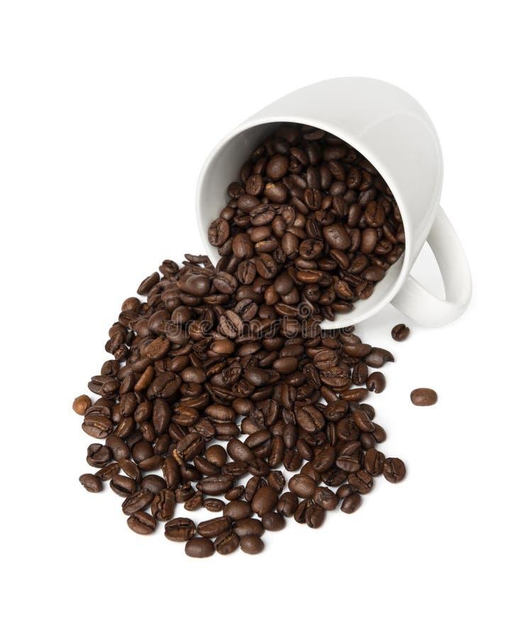 Tazza di caffè fresca fotografia stock libera da diritti
