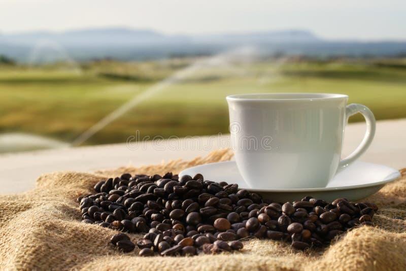 Tazza di caffè macchiato e chicco di caffè su un sacco con il fondo vago di vista immagini stock