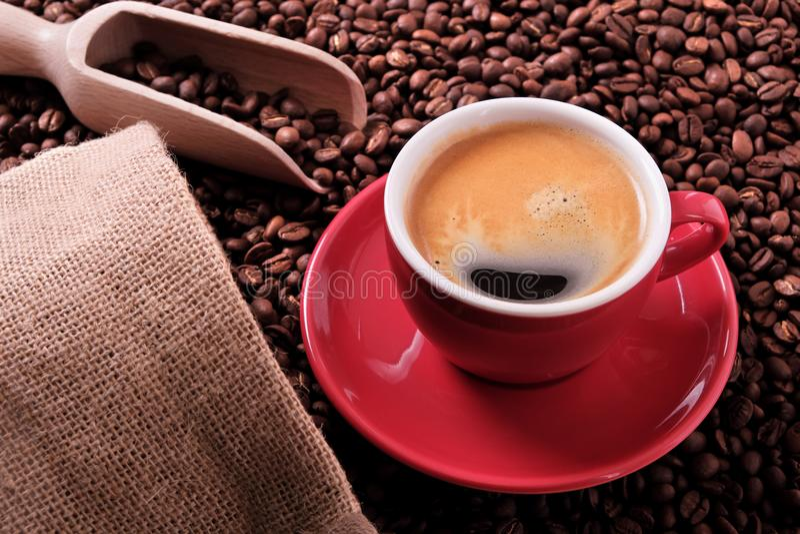 Tazza di caffè rossa con caffè espresso ed i semi di cacao torrefatti immagine stock