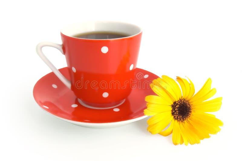 Tazza di caffè rossa con un fiore giallo immagini stock libere da diritti