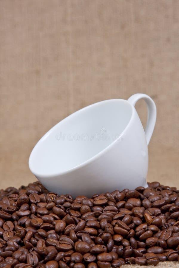 Tazza di caffè sopra i fagioli fotografie stock libere da diritti