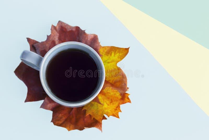 Tazza di caffè sulle foglie di acero e sulla carta multicolore, vista superiore, fondo di autunno immagine stock