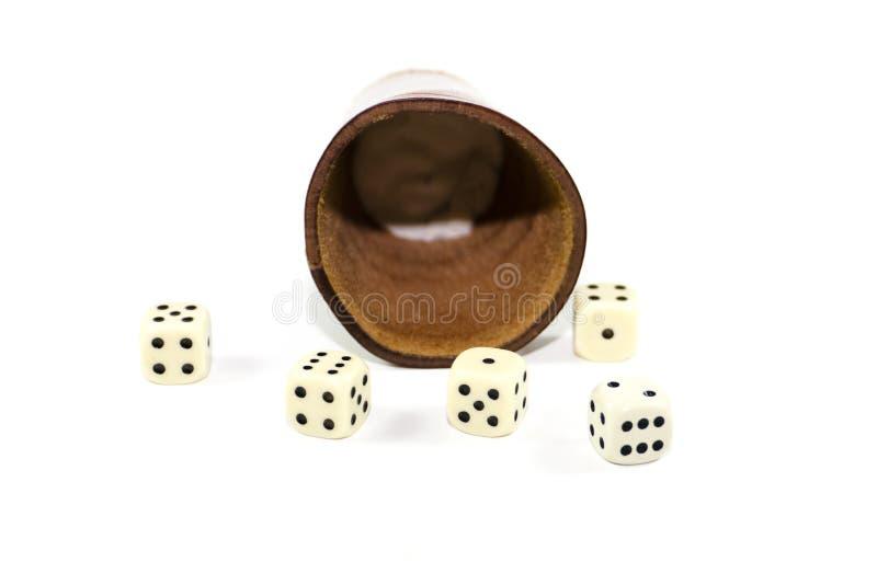 Tazza di dadi del cuoio di Brown con il gioco dei cubi fotografia stock libera da diritti