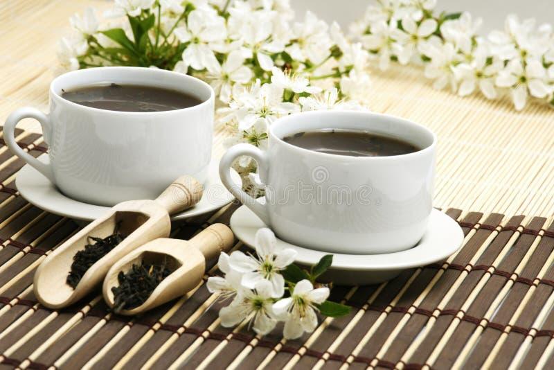 Tazza di distensione del tè della frutta immagini stock libere da diritti