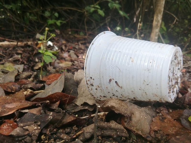 Tazza di plastica e l'inquinamento sulla mangrovia immagine stock