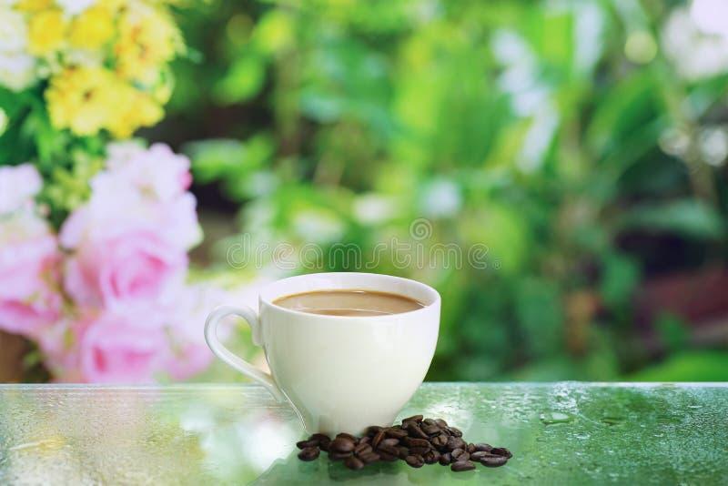 Tazza di tè bianca con sole fotografia stock libera da diritti
