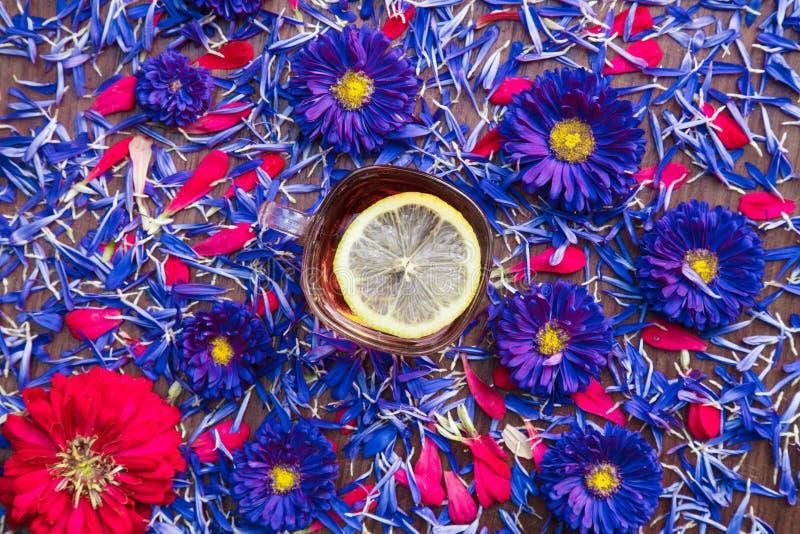 Tazza di tè con il limone con i fiori blu immagini stock libere da diritti
