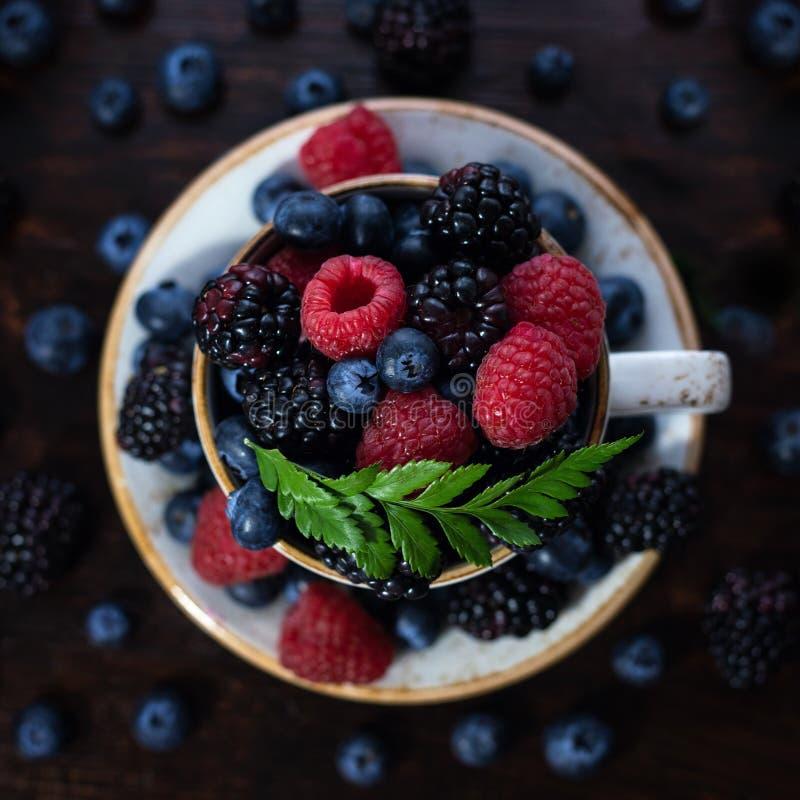 Tazza di tè con il primo piano delle bacche su un fondo scuro Lampone, mora, mirtillo in una tazza con un piattino e un verde fotografie stock