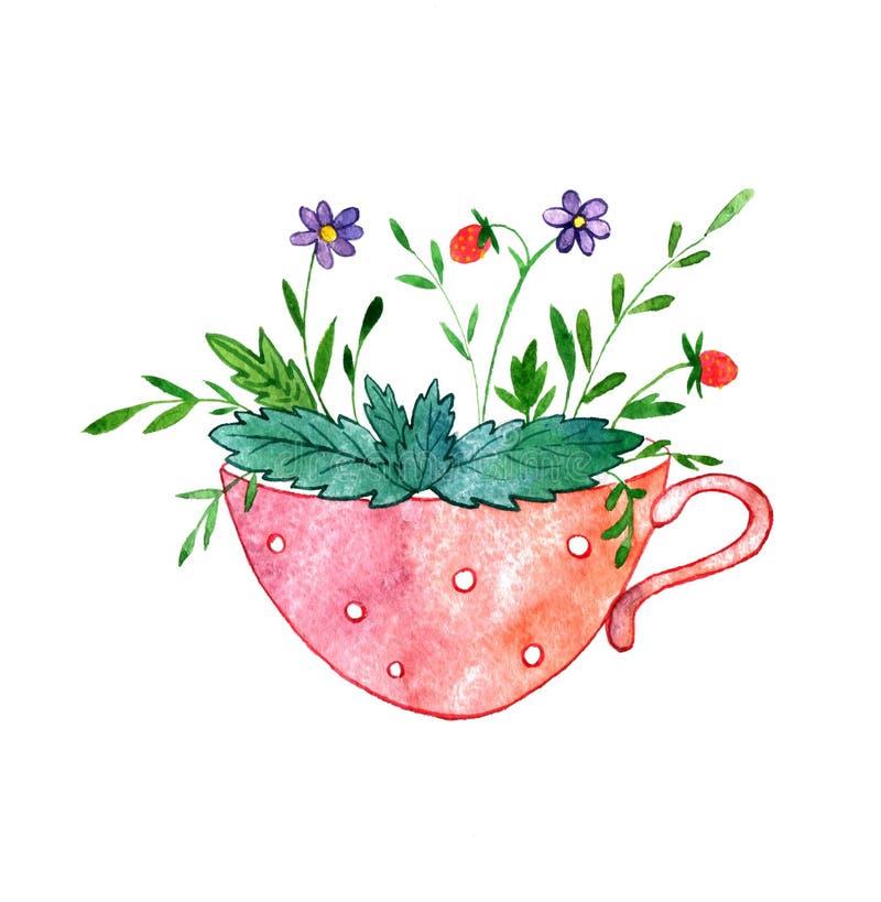 Tazza di tè con le erbe, i fiori e le bacche illustrazione vettoriale