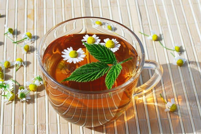 Tazza di tè di erbe con la camomilla ed il foglio verde immagine stock