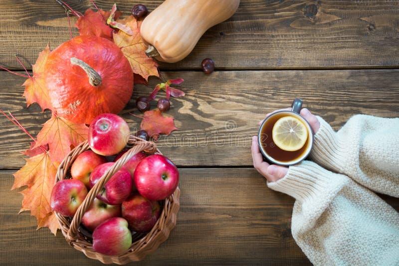 Tazza di tè di riscaldamento con il limone a disposizione ed il raccolto, zucca, mele, foglie di autunno variopinte sul bordo di  immagine stock