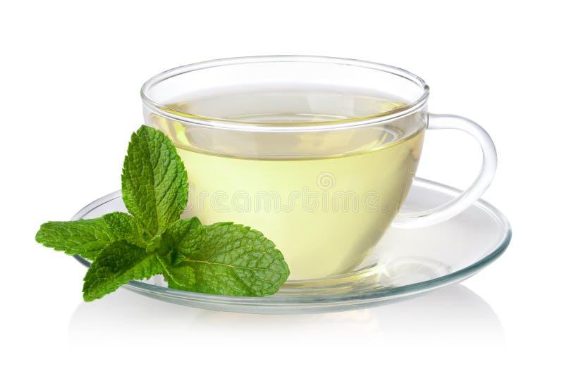 Tè verde fresco fotografia stock libera da diritti