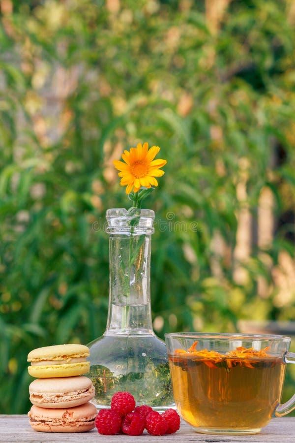 Tazza di t? verde, dei dolci dei maccheroni, dei lamponi freschi e del fiore della calendula con un gambo in una boccetta di vetr fotografia stock libera da diritti