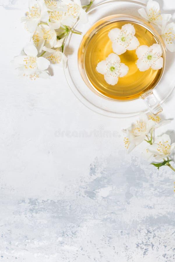 Tazza di tè verde fragrante fresco con il gelsomino ed il fondo bianco, vista superiore verticale fotografie stock