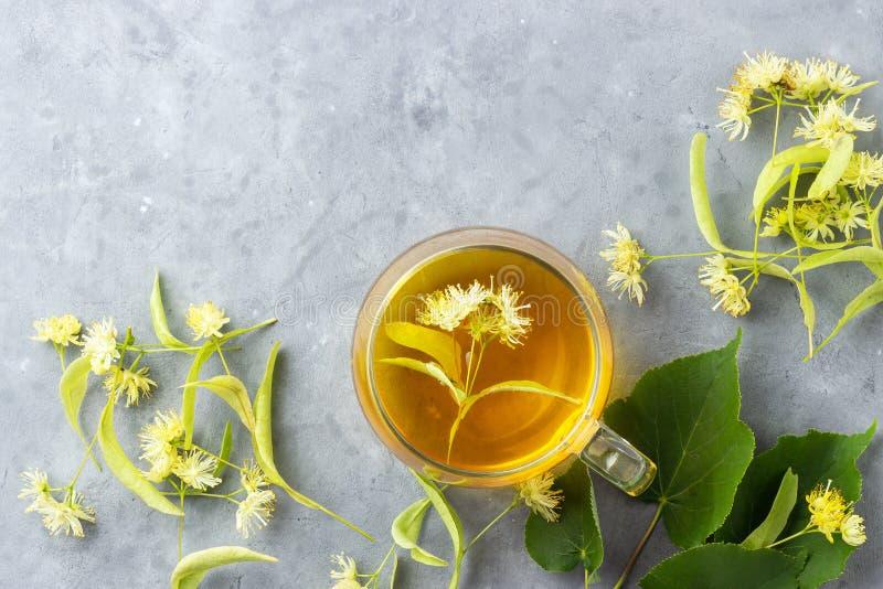 Tazza di tisana fresca con il fiore del tiglio su fondo di pietra grigio fotografia stock libera da diritti