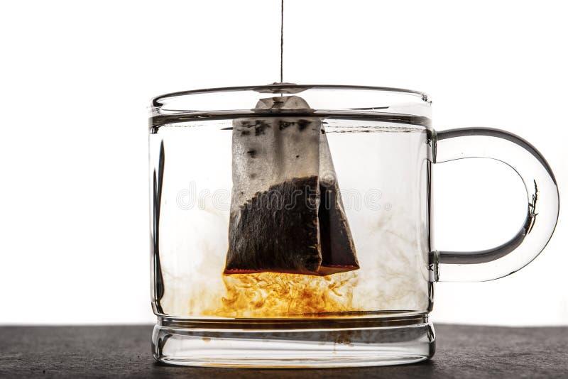 Tazza di vetro con la bustina di tè e dell'acqua immagine stock libera da diritti